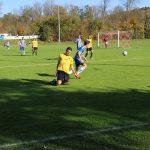 15. Spieltag: TSV Altenmarkt - TSV Reischach 2019-2020